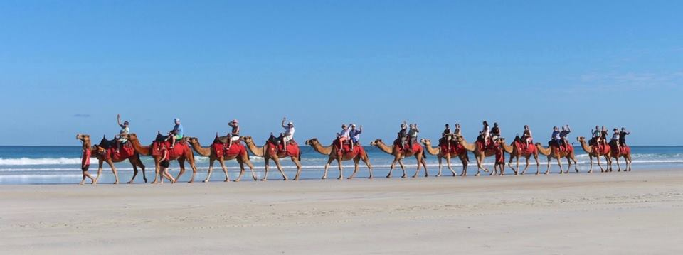 Magical Morning Camel Ride on Cable Beach